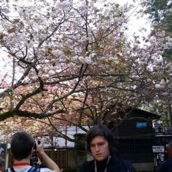 2016-April-Muroto-14
